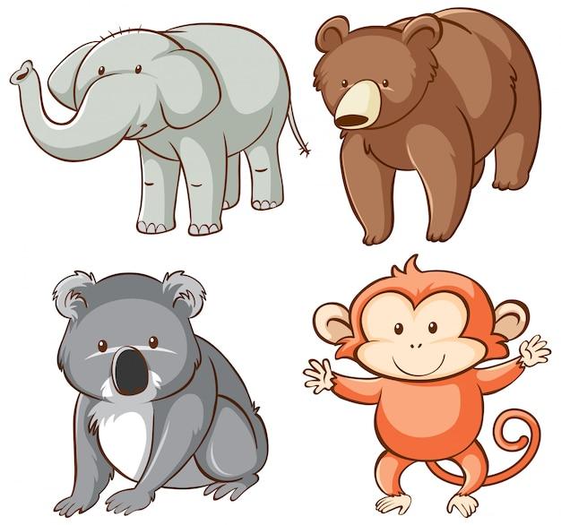Odosobniony obrazek dzikie zwierzęta