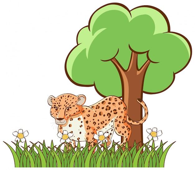 Odosobniony obrazek tygrys w ogródzie