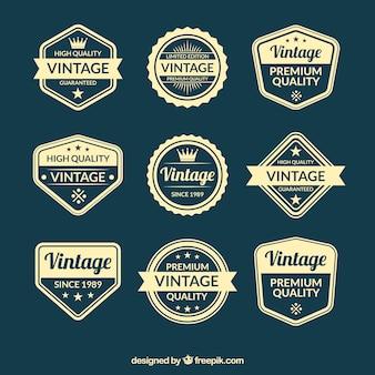 Odznaka kolekcja w stylu vintage