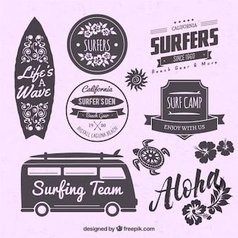 Odznaki O Surf Na Fioletowym Tle Premium Wektorów