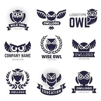 Odznaki sowa. latające ptaki z piór dzikich zwierząt herby lub logo wektor zbiory. ilustracja sowa ptak etykieta, sylwetka zwierzę latające logo