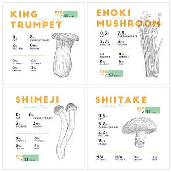 Odżywianie faktem zestawu grzybów