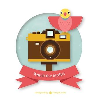 Oglądaj birdie!