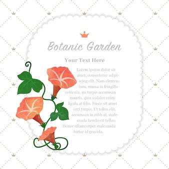 Ogród botaniczny ramka pomarańczowy powój