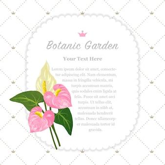 Ogród Botaniczny Ramka Różowy Kwiat Flaminga Anturium Premium Wektorów
