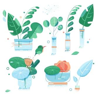 Ogród miejski. zielone liście egzotycznych roślin. kwiat w szklanych butelkach. płaski styl