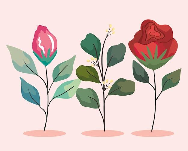 Ogród z dwoma kwiatami