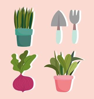 Ogrodnictwo, rośliny doniczkowe łopata do buraków ikony grabie