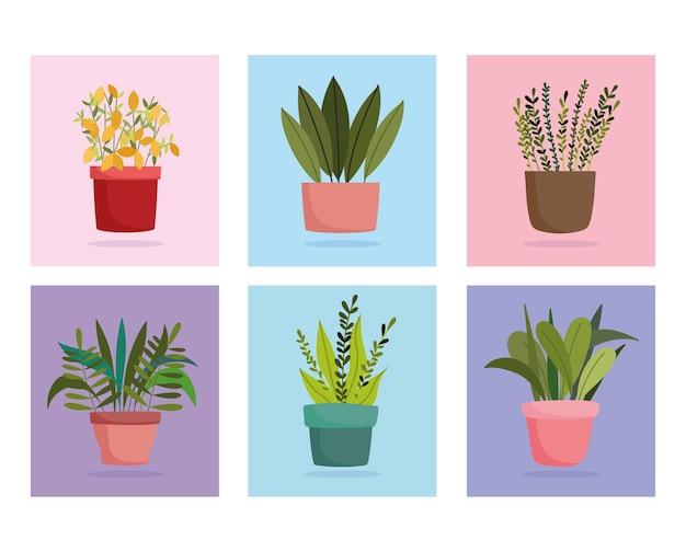 Ogrodnictwo, zestaw różnych zielonych doniczek, ikony bloków kolorów