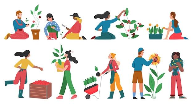 Ogrodnicy ludzie uprawiają zestaw ilustracji roślin ogrodniczych