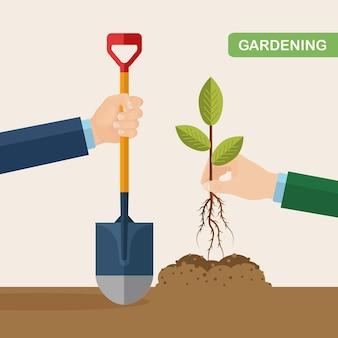 Ogrodnik trzyma w ręku drzewko, kiełek i łopatę
