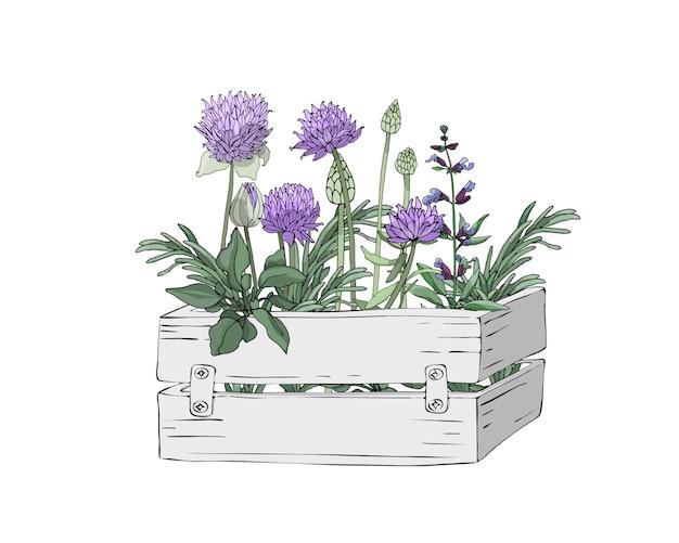Ogrodowe drewniane jasnoszare pudełko ze świeżymi ziołami do gotowania
