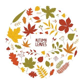 Okrągła jesienna kompozycja z suszonych liści, gałęzi i jagód na białym tle. dekoracyjny element wystroju, dekoracja sezonowa. kolorowa naturalna ilustracja w stylu płaski.