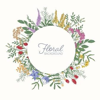 Okrągła ramka lub obwódka ozdobiona kolorowymi kwitnącymi dzikimi kwiatami łąkowymi, kwiatostanami i liśćmi
