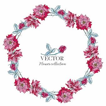 Okrągłe ramki akwarela róż i jagód. ilustracja wieniec kwiatów.