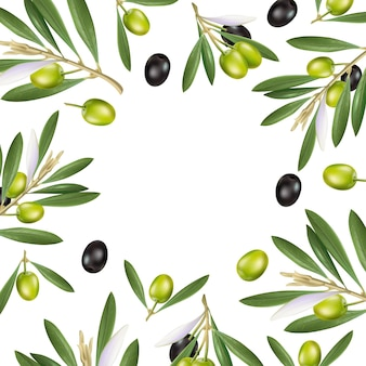 Oliwkowa rama plakatów reklamowych, pocztówek, etykiet na produkty z oliwek. napis oliwy z oliwek pędzlem.