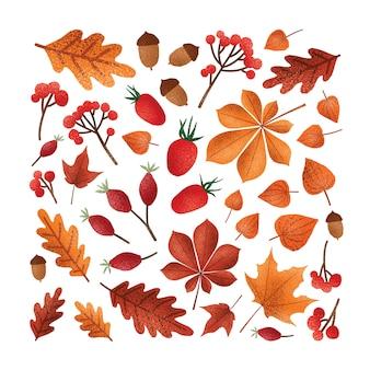 Opadłe drzewo jesienne liście lub suszone liście, żołędzie, orzechy, ilustracja jagody.