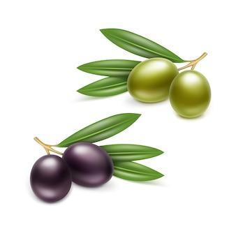 Opakowanie z puszki oliwek. ilustracja na białym tle