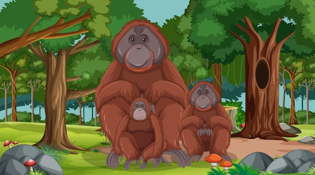 Orangutan w lesie lub w lesie deszczowym z wieloma drzewami