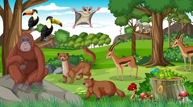 Orangutan z innymi dzikimi zwierzętami w lesie lub w lesie deszczowym