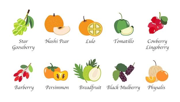 Organiczna natura zdrowie na białym tle kolekcja owoców