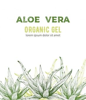 Organiczny żel aloe vera z rysunkami w stylu linii