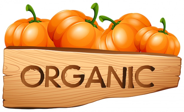 Organiczny znak z dyni