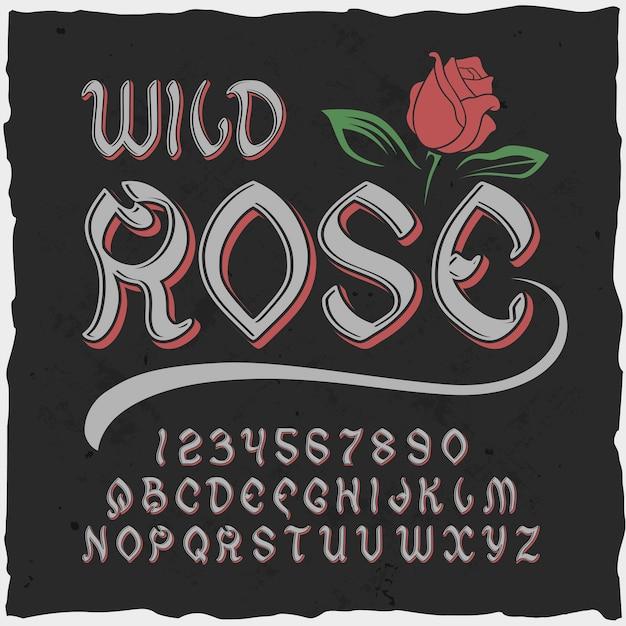 """Oryginalny krój pisma o nazwie """"dzika róża""""."""
