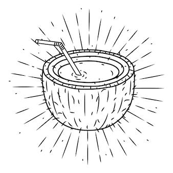 Orzech kokosowy. ręcznie rysowane ilustracji z sunburst.