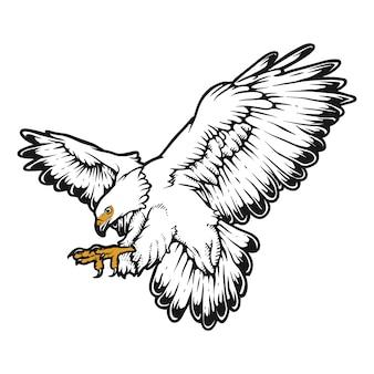 Orzeł obdzierający dzikie zwierzę ptak