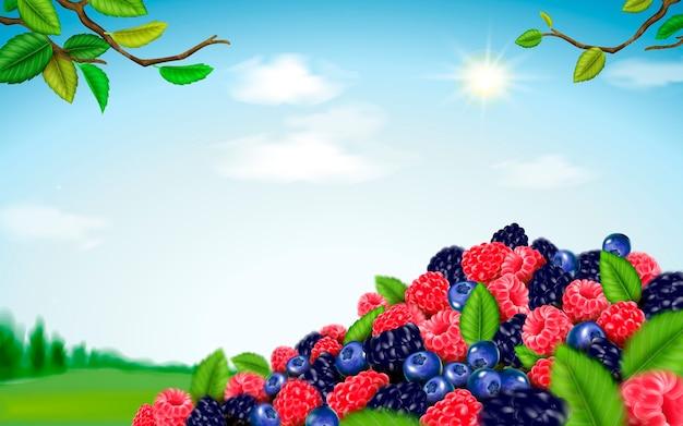 Orzeźwiająca mieszanka jagód ilustracja