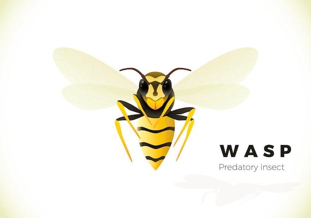 Osa ilustracja kreskówka na białym tle. trujący owad. żółta osa.