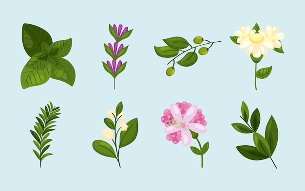 Osiem wiosennych elementów natury