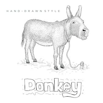 Osioł stojący na trawie. ręcznie rysowane ilustracji zwierząt