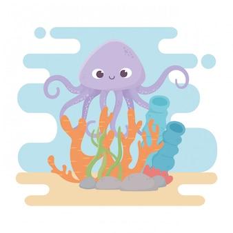 Ośmiornica życie kamienie rafa koralowa kreskówka pod morzem
