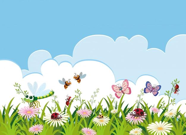 Owad i piękny kwiat szablon