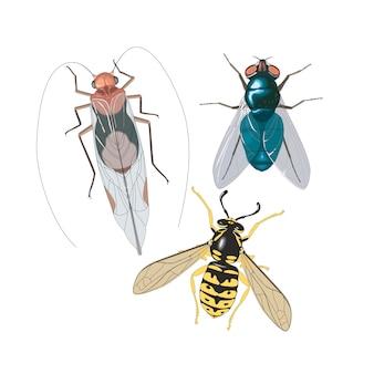 Owady latają pszczoły karaluchów