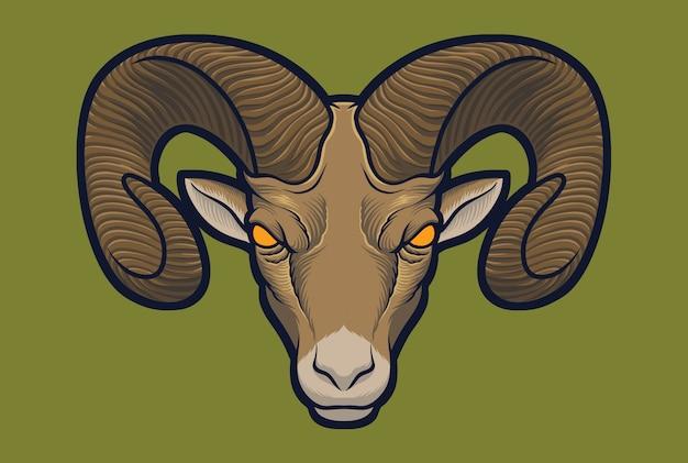 Owca wielkoroga