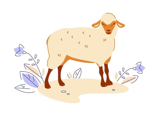 Owce. ilustracja wektorowa w stylu cartoon płaski.
