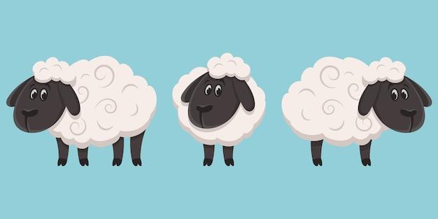 Owce w różnych pozach. zwierzęta hodowlane w stylu cartoon.