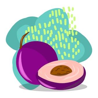 Owoc. rysunek odręczny. śliwka