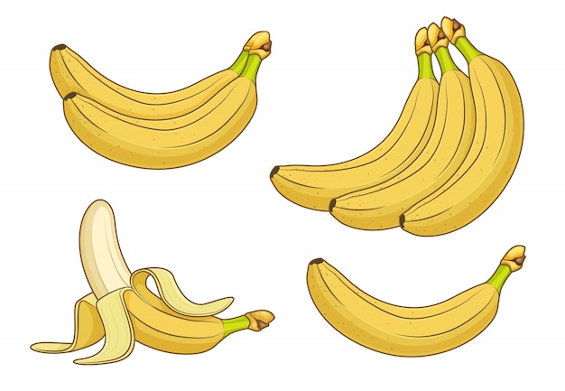 Owoce bananowe kreskówka. wiązki świezi banany ilustracyjni