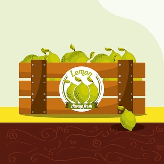 Owoce cytryny zawsze świeże w koszyku z drewna