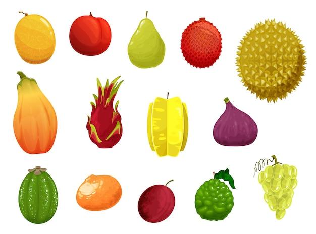 Owoce ikony melon, brzoskwinia, gruszka i liczi, durian lub papaja z limonką, śliwką lub owocem smoka. karambola, figa lub pitaja, liczi i mandarynka, zestaw egzotycznych owoców tropikalnych