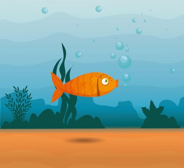 Ozdobne ryby zwierząt morskich w oceanie, mieszkaniec świata morskiego, słodkie podwodne stworzenie, siedlisko morskie