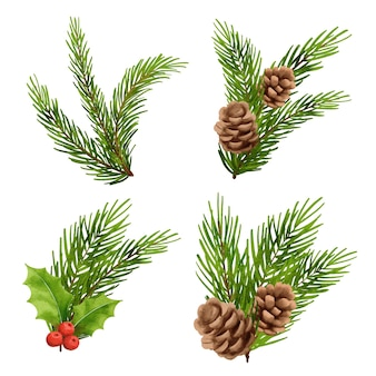 Ozdoby świąteczne w stylu przypominającym akwarele holly berry jodła gałąź sosna szyszka świerk