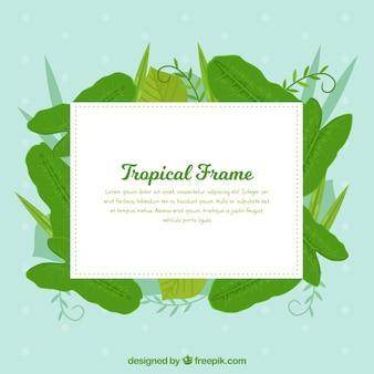 Płaska letnia ramka z tropikalnymi liśćmi