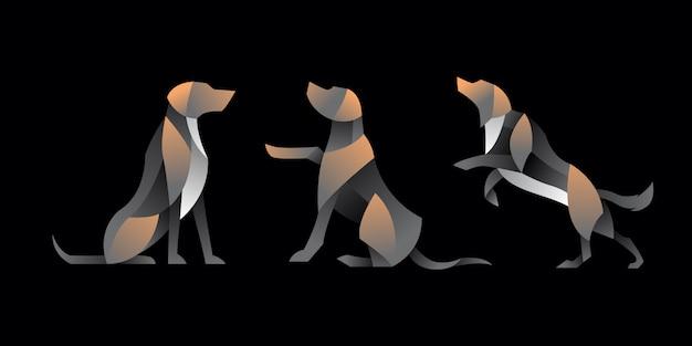 Paczka gradientu labradora psa