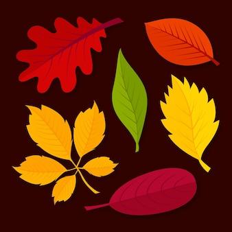 Paczka jesiennych liści