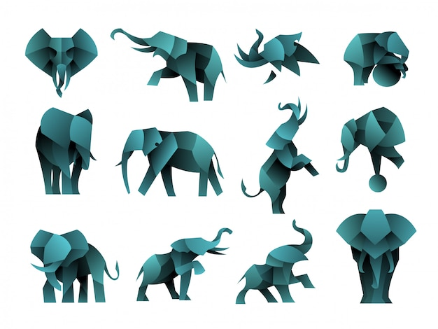 Paczka logo słonia gradientowego